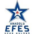 Efes Anadolu Istanbul teamOne logo