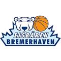 Eisbaren Bremerhaven teamOne logo