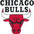 Chicago Bulls teamtwo logo