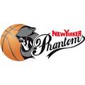 Basketball Lowen Braunschweig teamtwo logo