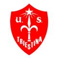 US Triestina Calcio 1918 teamtwo logo