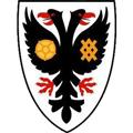 AFC Wimbledon teamOne logo