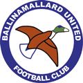 Ballinamallard United teamOne logo