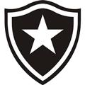 Botafogo RJ teamOne logo