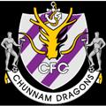 Jeonnam Dragons teamtwo logo