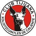 Tijuana teamtwo logo