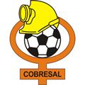 CD Cobresal team logo