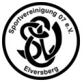 SV 07 Elversberg teamOne logo