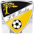 Honka teamOne logo