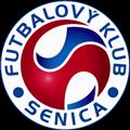 FK Senica teamOne logo