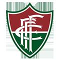 Fluminense De Feira BA teamOne logo