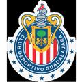 Chivas teamOne logo
