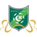 Hangzhou Greentown teamtwo logo