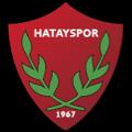 Hatayspor Antakya team logo