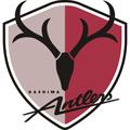 Kashima Antlers teamOne logo