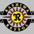 Kashiwa Reysol teamOne logo