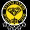 Maccabi Netanya teamOne logo