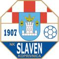 Slaven Belupo teamtwo logo