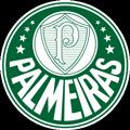 Palmeiras teamtwo logo