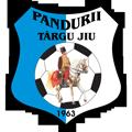 Pandurii Targu Jiu teamOne logo