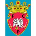Penafiel teamOne logo