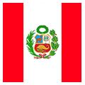 Peru teamOne logo