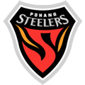 Pohang Steelers teamtwo logo