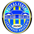 Puskas Akademia FC teamOne logo