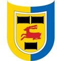 Cambuur teamOne logo