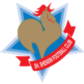 Shanghai Shenxin teamtwo logo
