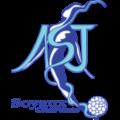 Soyaux D team logo