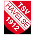 TSV Havelse teamOne logo