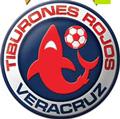 Veracruz teamOne logo