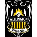 Wellington Phoenix teamtwo logo