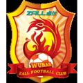 Wuhan Zall teamOne logo