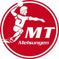 MT Melsungen teamOne logo