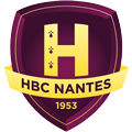 Nantes Loire Atlantique HB teamOne logo