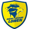 Rhein Neckar Loewen teamOne logo