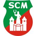 SC Magdeburgo teamOne logo