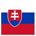 Eslovaquia -18 teamOne logo