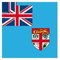 Fidji team logo