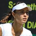 Vitalia Diatchenko team logo
